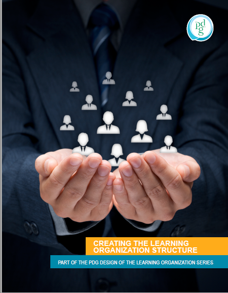 Creatig the learning organization structure